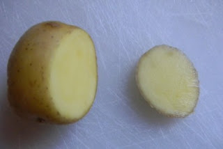 small potato on a cutting board with top cut off