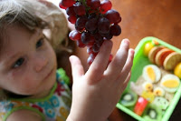 child picking at champagne grapes