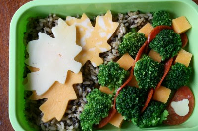top down picture of Change of Season Lunchbox Idea