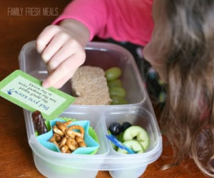 Lunchbox Love notes with FamilyFreshMeals,com