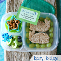 Baby Beluga Lunch with Lunchbox Love Giveaway