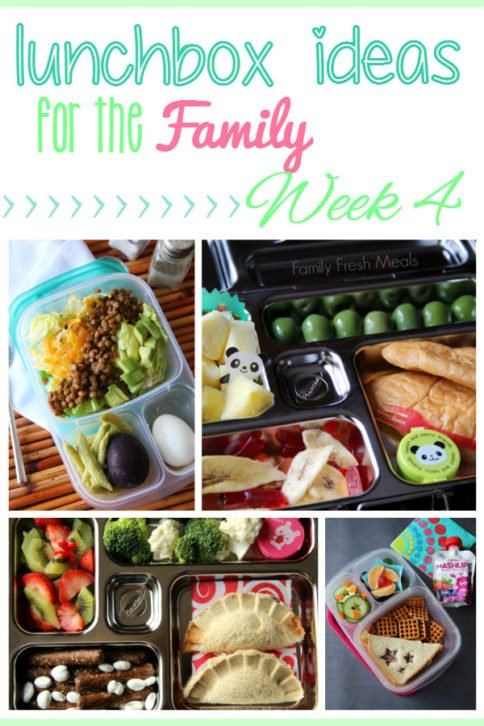 Collage image showing 4 different lunchbox ideas