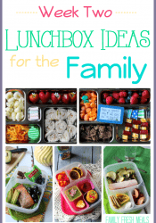 Easy Lunchbox Ideas for the Family: Week 2