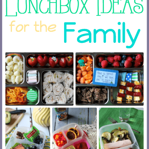 Easy Lunchbox Ideas for the Family- Round up Week 2 -- Family Fresh Meals