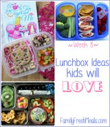 Lunchbox Ideas Kids will Love