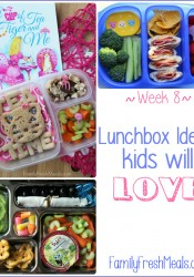 Lunchbox Ideas Kids will Love