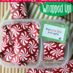 Fun and Easy Christmas Lunch Idea
