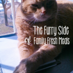 The Furry Side of Family Fresh Meals —– {Part 1}