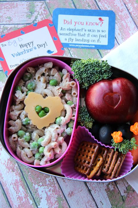 Valentine's day Lunchbox Ideas - pasta salad