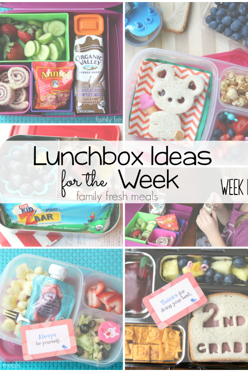 Rock The Lunchbox – School Lunchbox Ideas -- Week 15 - FamilyFreshMeals.com