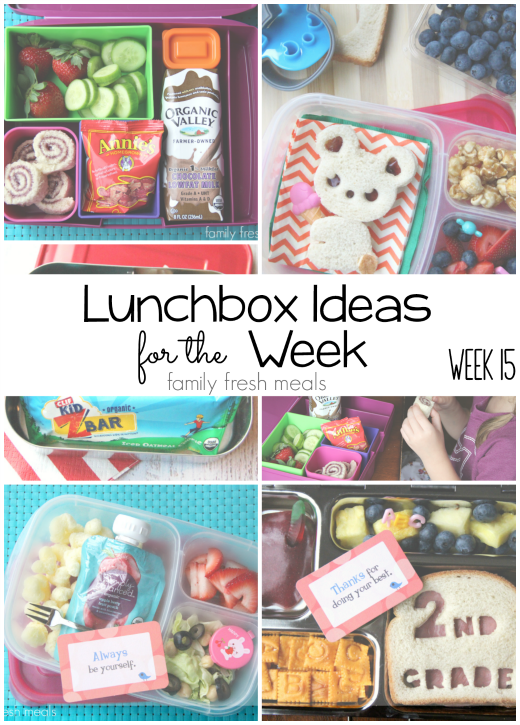 Rock The Lunchbox - School Lunchbox Ideas -- Week 15- FamilyFreshMeals.com