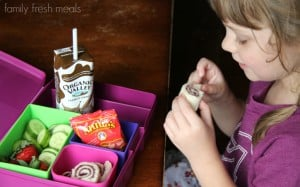 Rock the Lunchbox School Lunchbox Ideas - familyfreshmeals.com
