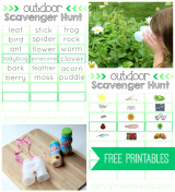 Outdoor Scavenger Hunt with Go Wild! + Free Printable