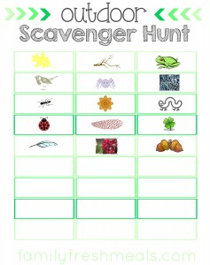 outdoor scavenger hunt with images - familyfreshmeals.com