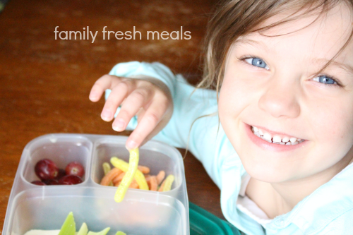On the Go Snack Lunches - Enjoy! FamilyFreshMeals.com -