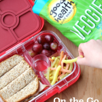 On the Go Snack Lunch Ideas