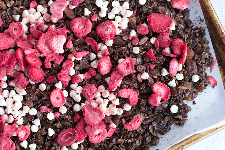 Chocolate Covered Strawberry Granola - Step 2 - FamilyFreshMeals.com