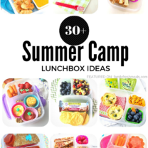 Over 30 Summer Camp Lunchbox Ideas