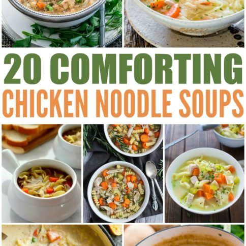 20 Comforting Homemade Chicken Noodle Soup Recipes