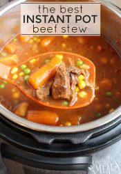 The Best Instant Pot Beef Stew