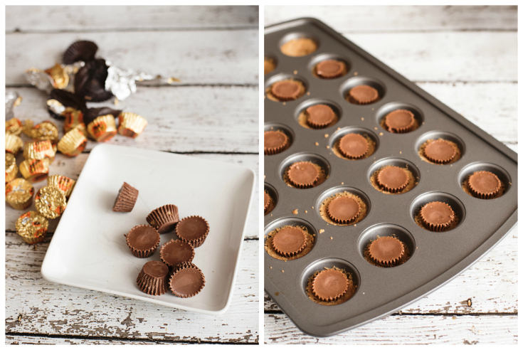 Peanut Butter Cup Smore Bites - Step 4