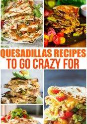 Yummy Quesadillas to Go Crazy For