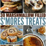 30 Different Smores Treats – Family Fresh Meals