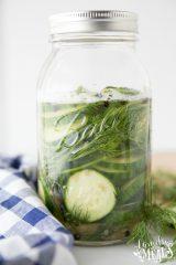 Easy Refrigerator Pickles Recipe - Family Fresh Meals