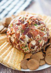 Savory Bacon Cheese Ball - Family Fresh Meals Recipe