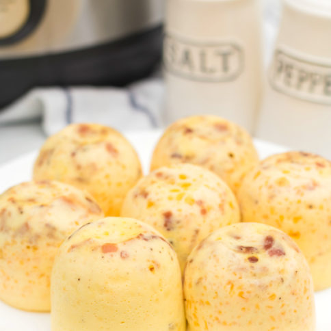 Instant Pot Bacon Cheddar Egg Bites - Family Fresh Meals