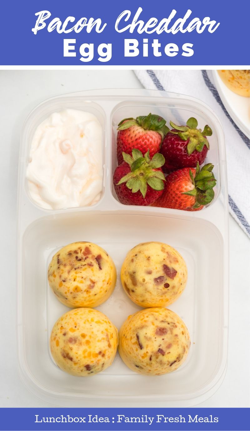 Instant Pot Bacon Cheddar Egg Bites packed in Easy Lunchboxes