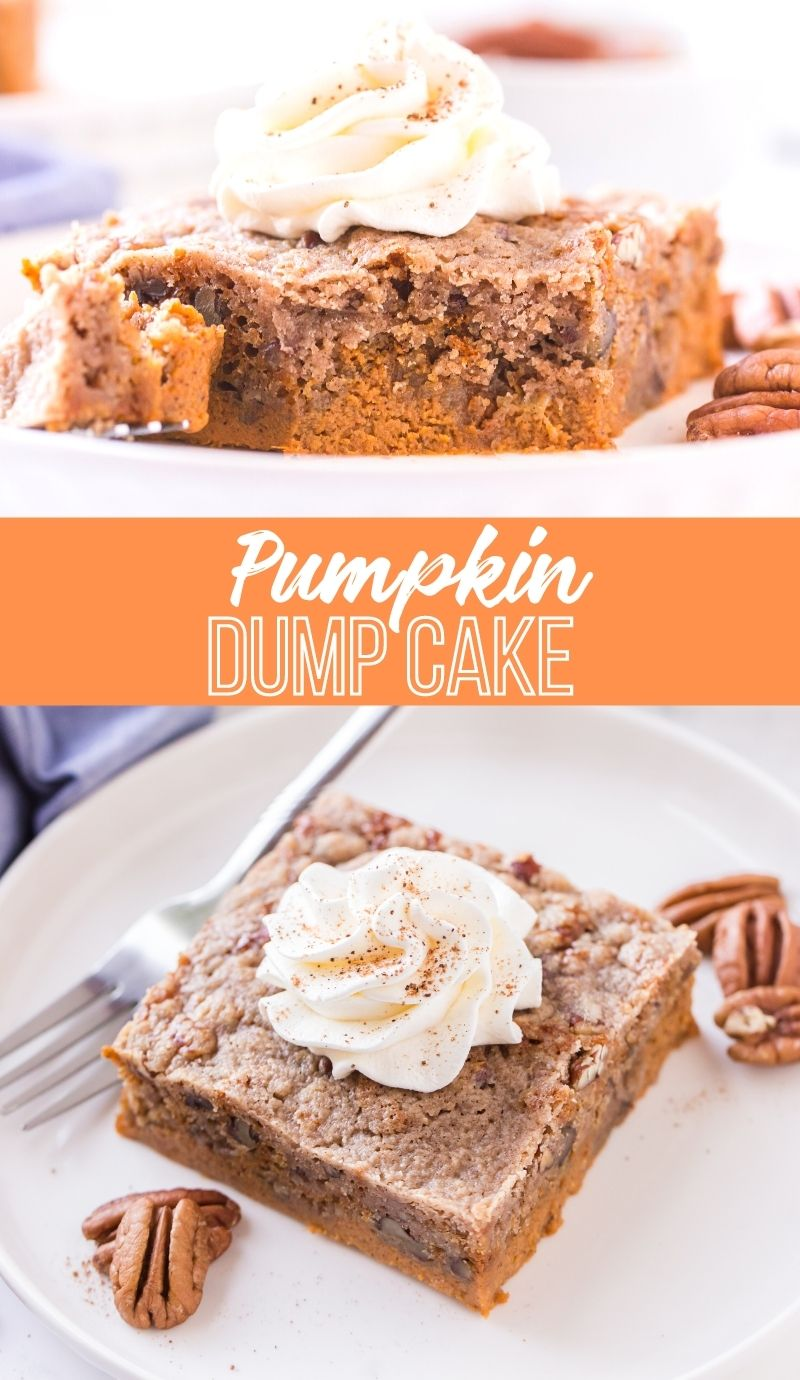 Easy Pumpkin Dump Cake! My most requested dessert of the fall! #familyfreshmeals #recipe #pumpkin #baking #fallbaking via @familyfresh