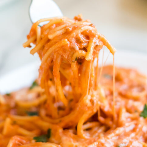 plate of creamy spaghetti with a fork picking up some