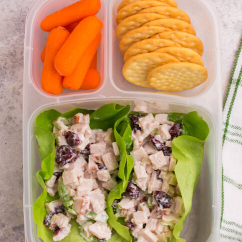 lunchbox packed with turkey salad lettuce cups, baby carrots and carrots